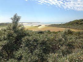Naturschutzgebiet Zwin